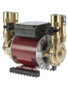Deluge Twin Brass Low Pressure Gravity Pump (3.0 bar)
