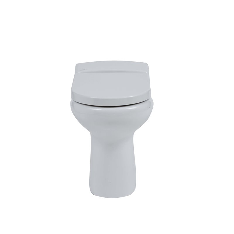 Rimless back to wall wc ivory wash basin